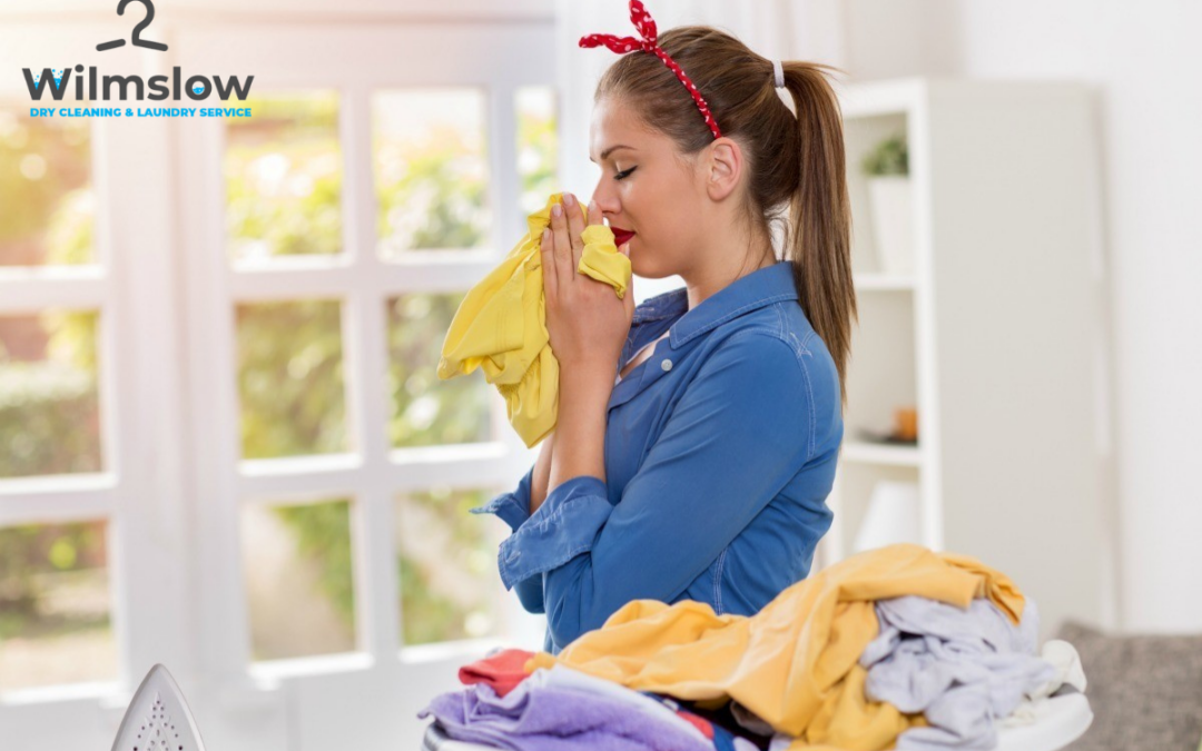 Best Laundry & Launderettes in Sheffield 24h Delivery Service
